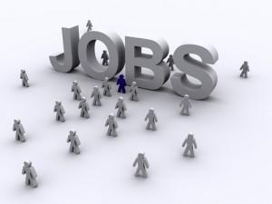 job_search-300x225